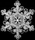 Ein Schneekristall, fotografiert von Wilson Bentley